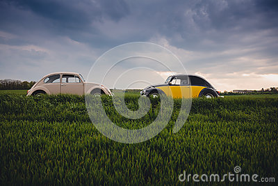 White Volkswagen Beetle In Front Of Black And Yellow Volkswagen Beetle During Daytime Free Public Domain Cc0 Image