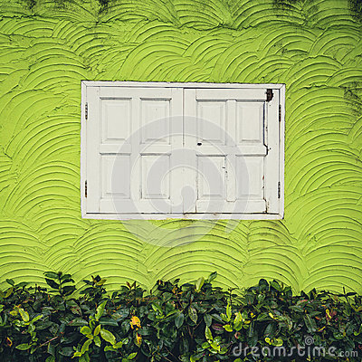 White window and Green Background