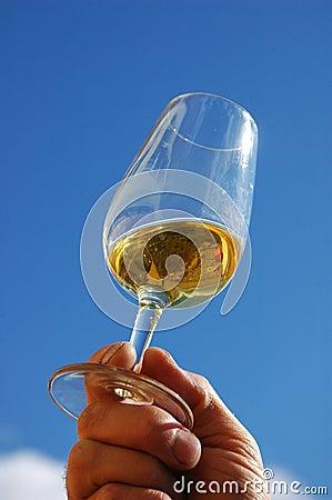 White Wine Blue Sky