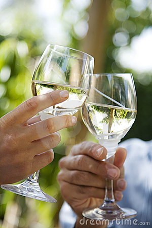 Free White Wine Toast Royalty Free Stock Image - 7446476