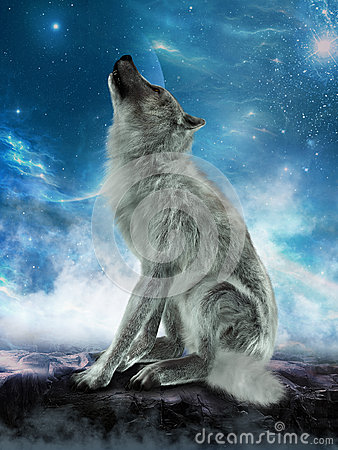 White Wolf Howling Moon Illustration Stock Photo