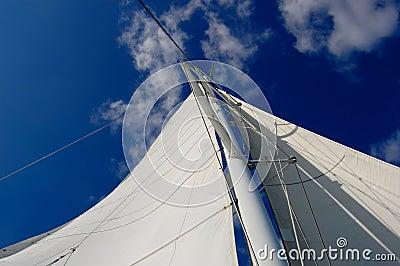 White yacht sail