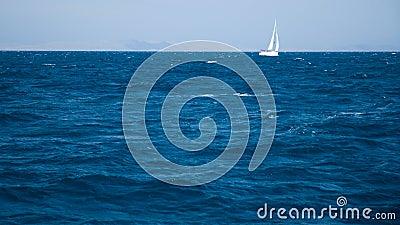 White yacht sailing