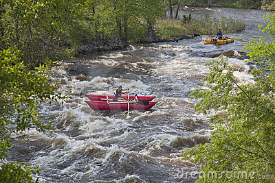 Whitewater rafters Editorial Stock Image