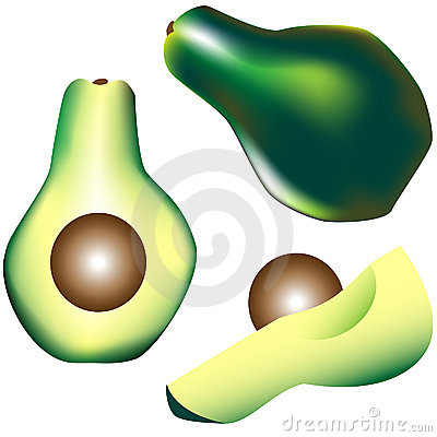 Whole avocado, slice and wedge in vector