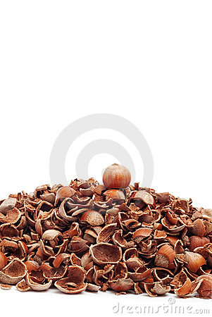 Whole hazelnut on top of cracked