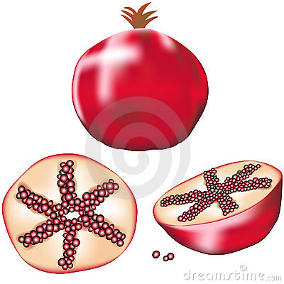 Whole pomegranate, slice and wedge in vector