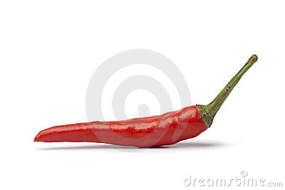 Whole single fresh tabasco pepper