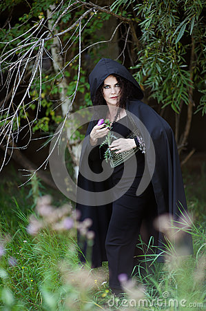 Wicked witch is hiding behind the bushes