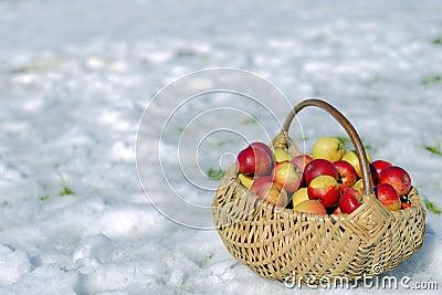 Wicker Basket of Apples