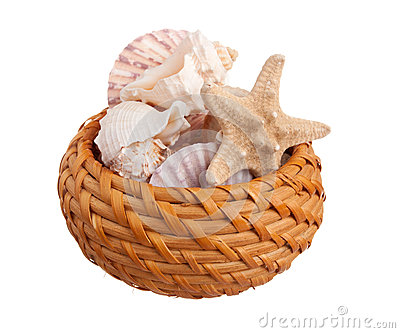 Wicker basket full of sea shells