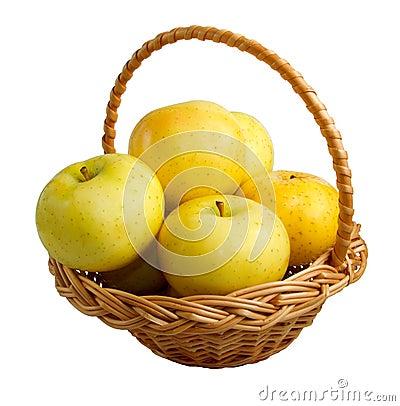 Wicker basket with golden apples