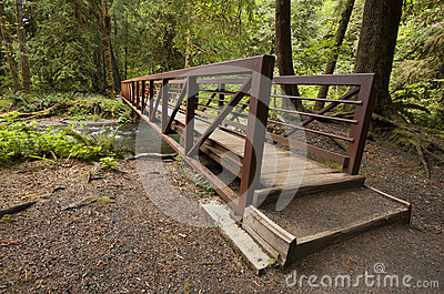 Wide angle photo of Nature Bridge end near Marymere Falls, Olympic National Park