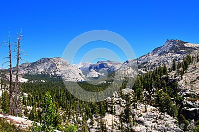 Lake, forest and mountains in Yosemite