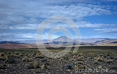Wide Landscape in Bolivia,Bolivia