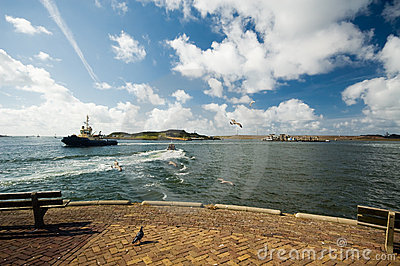Wide view of a harbor