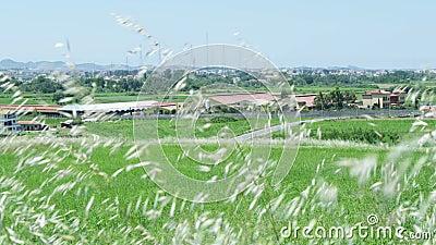 Widok wioska od gazonu zbiory