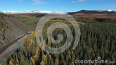 Widok z lotu ptaka na las w pobliżu autostrady Dempster jesienią Dempster Highway, Jukon, Kanada zdjęcie wideo