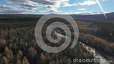Widok z lotu ptaka na las w pobliżu autostrady Dempster jesienią Dempster Highway, Jukon, Kanada zbiory wideo