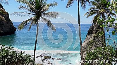 Widok z lotu ptaka na plażę tropikalną, skały morskie, turkusowy ocean i kobiety poruszające się między palmami Plaża Atuh, Nusa zbiory