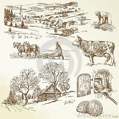 Wiejski krajobraz, rolnictwo