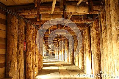 Wieliczka salt mine (Poland)