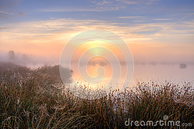 Wielki mglisty zmierzch nad bagnem