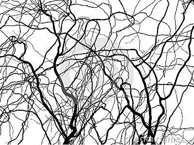 Wierd branch