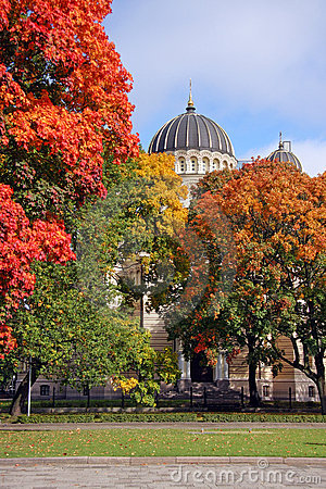 Wiew of cathedral building beyond autumn trees