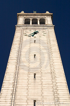 Wieży
