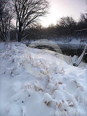 Świeży opad śniegu w Illinois