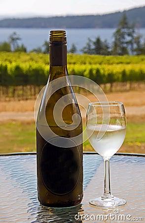 Wijn bij een wijngaard van de het westenkust