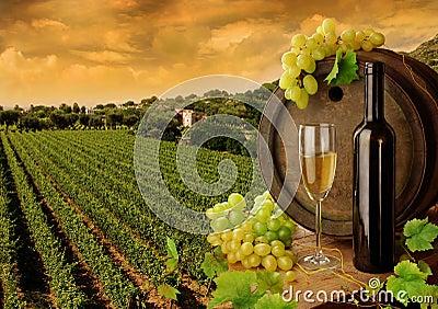 Wijn en wijngaard in zonsondergang