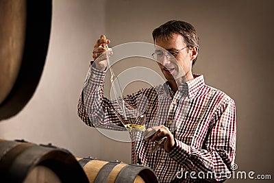 Wijnhandelaar die steekproef van witte wijn in kelder neemt.