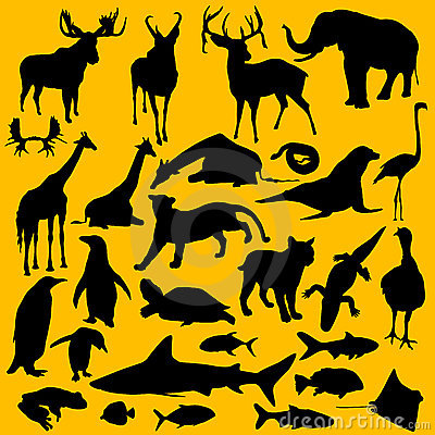 Free Wild Animals Stock Photos - 20118953