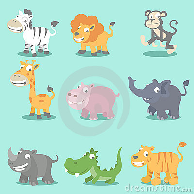 Wild animals seeries