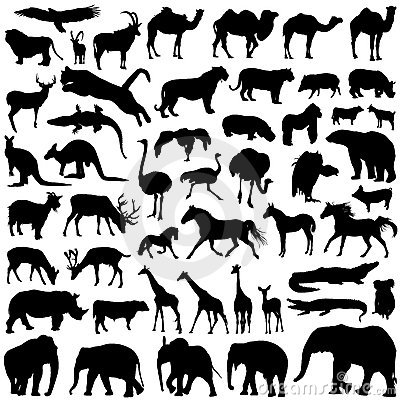 Free Wild Animals Silhouettes Stock Photography - 8506782