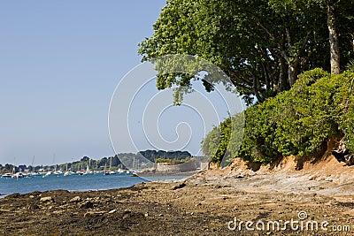 Wild beach - Brittany