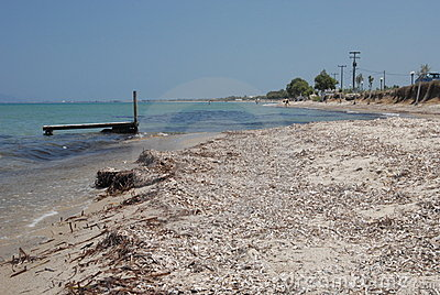 Wild beaches of Kos