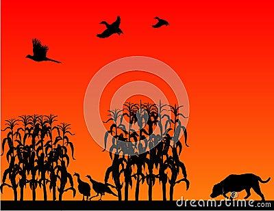 Wild Bird hunt..