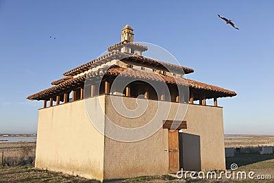 Wild bird observatory