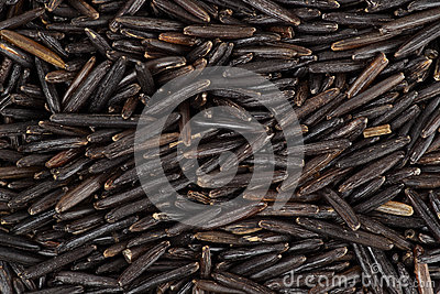 Wild black rice background