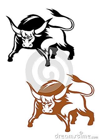 Wild buffalo bull