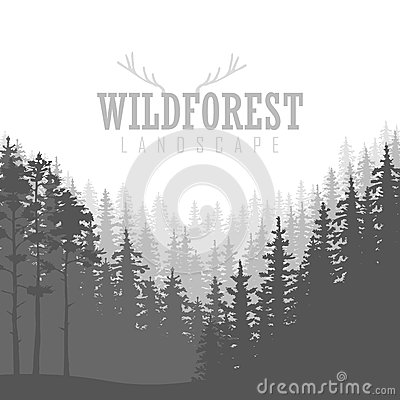 Wild coniferous forest background. Pine tree, landscape nature, wood natural panorama. Vector Illustration
