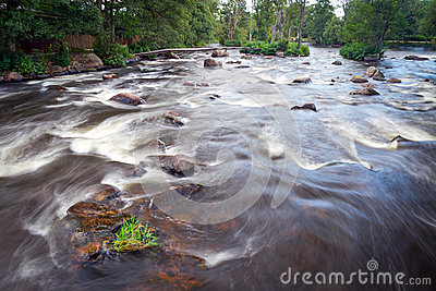Wild creek cascades in Sweden