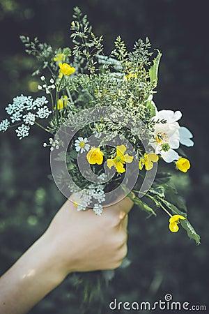 Free Wild Flower Bouquet Royalty Free Stock Photos - 117068358