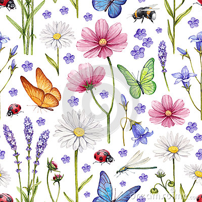 Free Wild Flowers And Insects Illustration Stock Photography - 38382672