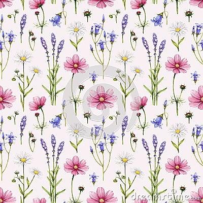 Free Wild Flowers Illustration Stock Photo - 38384890