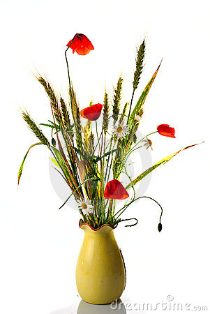 Free Wild Flowers Poppy Bouquet Stock Images - 14676204