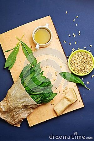 Wild garlic leaves pesto ingredients